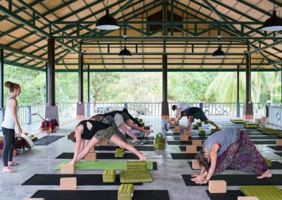 kohphangan-yoga